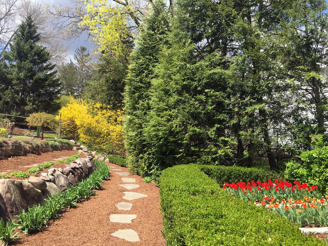 garden path next to trees and shrubs